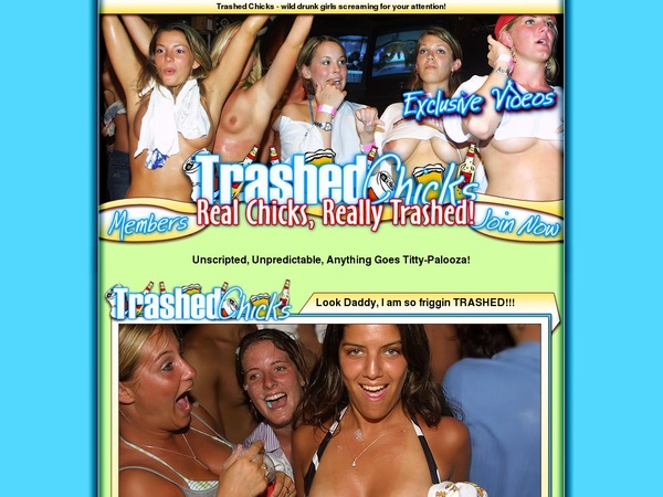 Trashed Chicks With Westbill